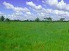 finca en venta en cumaribo, vichada - 4.200.000.000 - fiv171276 - bienesonline