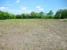 lote en venta en conjunto residencial campestre palma real, la dorada, caldas - 80.000.000 - lov38822 - bienesonline